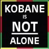SFR stödjer globala uppropet mot ISIS – för Kobanê – för Mänskligheten