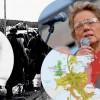Maria-Pia Boëthius om kvinnorna och nazismen